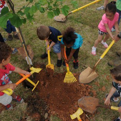 Children plant tree